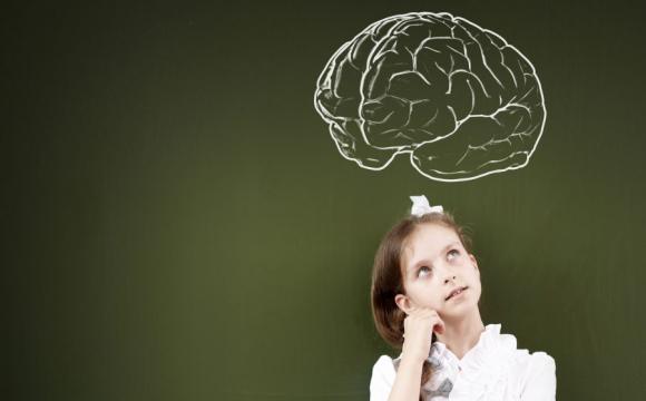 Через що зменшується наш мозок