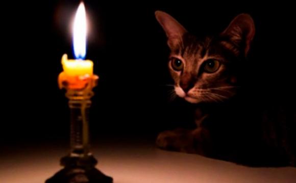 Де на Волині сьогодні, 15 лютого, не буде світла: адреси