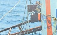 Чоловік, ризикуючи життям, рятував з тонучого судна котиків. ФОТО