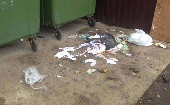 У місті на Волині мешканці викидають сміття мимо контейнерів. ФОТО