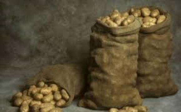 На Горохівщині «картопляні злодії» вкрали з льоху 400 кг овочів