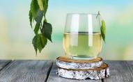Секрети заготівлі та консервування березового соку на Волині. ВІДЕО