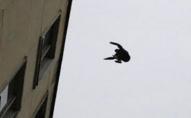 Зловили за ноги в останню секунду: в Луцьку 33-річний чоловік хотів стрибнути з даху