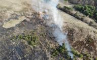 На Волині з квадрокоптерами ловлять паліїв трави. ФОТО
