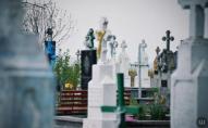Міський цвинтар на Волині хочуть розширити за рахунок вирубки лісу