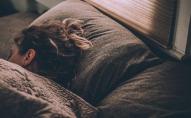 З початком пандемії людям частіше сняться тривожні сни - вчені