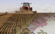 Громадяни, які самі обробляють земельні ділянки, мають задекларувати свої доходи