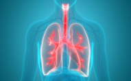 Знайшли спосіб знизити ризик смерті від хвороб серця
