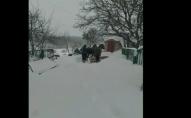Мера Нововолинська звинуватили в обмані щодо снігоочисної техніки. ВІДЕО
