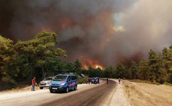 У Туреччині затримали підозрюваного у підпалі місцевих лісів