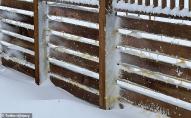 США накрило коричневим снігом. ФОТО