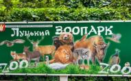 У Луцькому зоопарку - нововведення