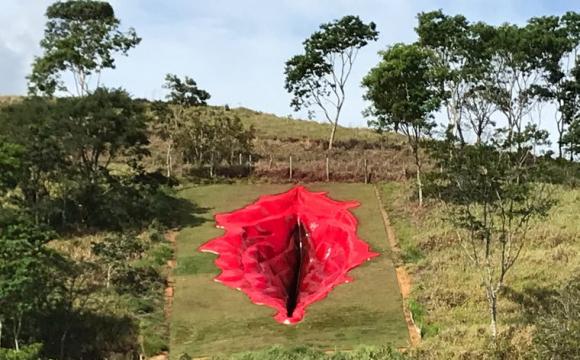 Мисткиня встановила 33-метрову інсталяцію вагіни. ФОТО
