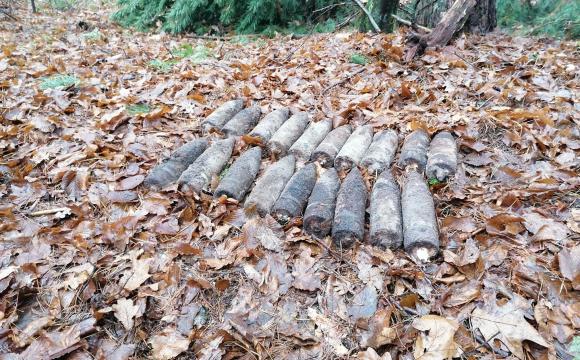 На Волині в лісі знайшли 19 артилерійських снарядів