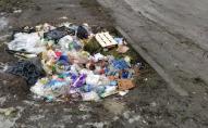 Луцька продавчиня створила сміттєзвалище на узбіччі. ФОТО