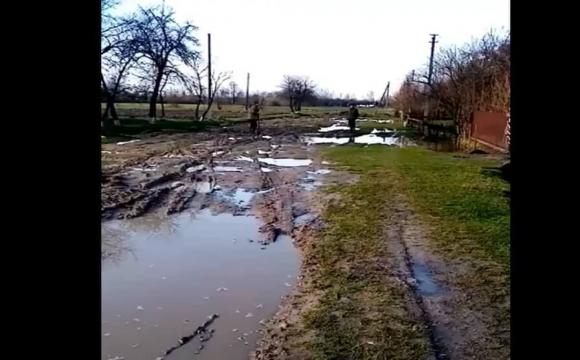 На Волині замість дороги величезна яма з болотом. ВІДЕО