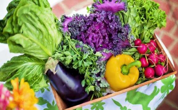 Скільки коштуватимуть продукти влітку