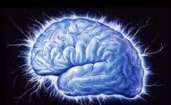 Нейтробот постачатиме ліки прямо у мозок