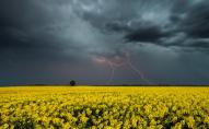 На заміну спеки в Україну прийдуть холодні дощі та грози