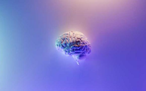 Вчені створили штучні клітини мозку: вони зберігатимуть спогади