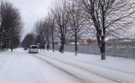 Через люті морози в Луцьку не виїхала частина громадського транспорту