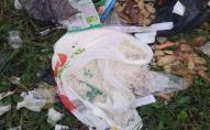 У місті на Волині невідомі розсипали сміття посеред вулиці. ФОТО