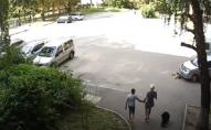 На очах у дітей: водій переїхав собаку не зупиняючи автомобіль. ВІДЕО