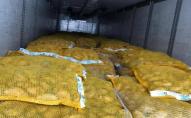 В Ягодині зловили водія, що незаконно віз 21 тонну картоплі. ФОТО
