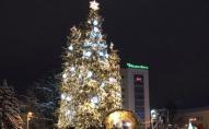 85 тисяч гривень витратять з бюджету Луцька на новорічну ялинку