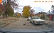 Кинув помирати: автомобіль переїхав кошеня на очах у дітей. ВІДЕО