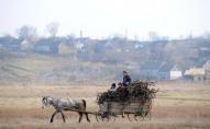 Пограбування по-волинськи: відкрито заволоділи підводою і конем