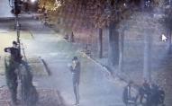 На Волині вандали пошкодили нещодавно встановлені декоративні фігурки: їх просять впізнати. ФОТО/ВІДЕО