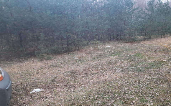 Після скандального посту в соцмережах волиняни почали прибирання сміття у лісі