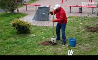 У луцькому «Сіті Парку» висадили понад 30 дерев. ФОТО