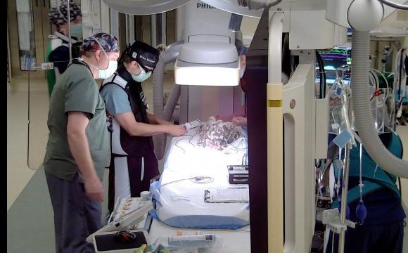 Жінка витратила $10 тис. на операцію для своєї курки