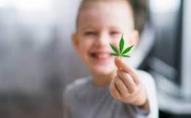 Школяр-«наркобарон» з Волині на 6 років сяде в тюрму