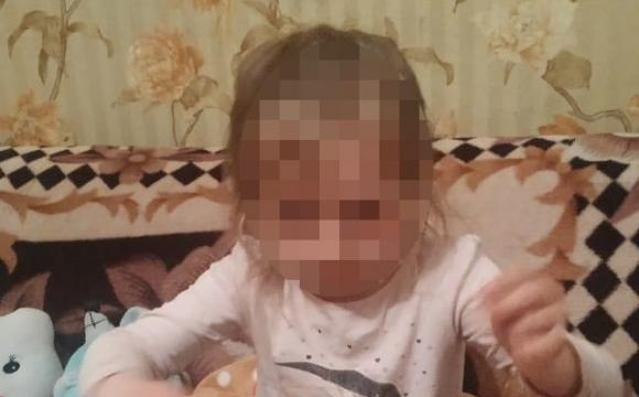 На Волині зникла 3-річна дівчинка: як її розшукали. ФОТО