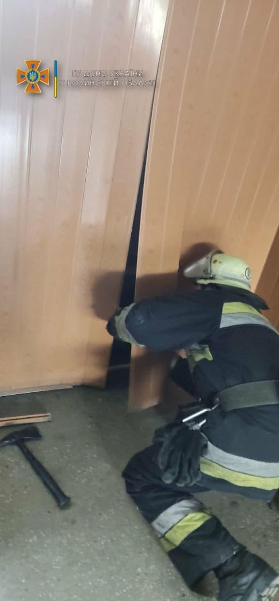 Заліз у пластикову стіну: волинські рятувальники визволяли кошеня. ФОТО
