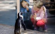 Пенсіонер купив 33 тисячі квитків у зоопарк, щоб роздати дітям