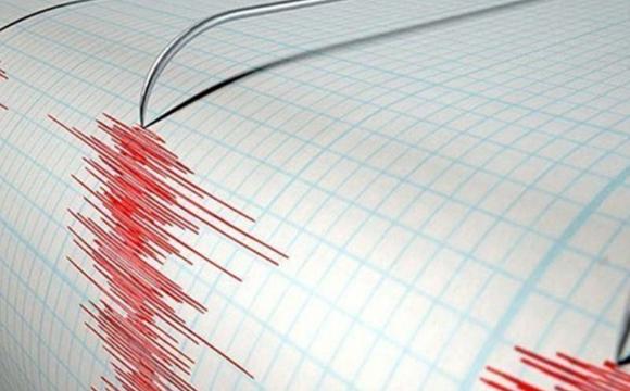 Які наслідки недільного землетрусу на Закарпатті?