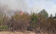 На Волині одночасно кілька пожеж