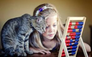 Першокласниця «замінувала» школу, бо скучила за своїм котиком