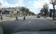 У Луцьку батьків просять звернути увагу на дітей, які перебігають дорогу. ВІДЕО
