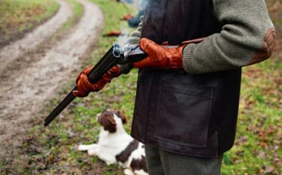 На Волині чоловік за 8 тисяч застрелив зайця