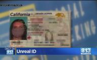 На фото з захисною маскою: жінка отримала «особливе» посвідчення водія. ВІДЕО