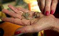 29-річна волинянка зняла з пенсіонерки «порчу», золоту каблучку і ланцюжок з хрестиком. ФОТО