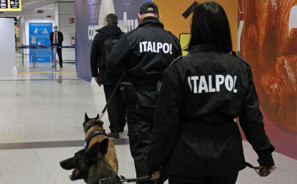 Хворих на COVID людей в аеропорту виявлятимуть собаки