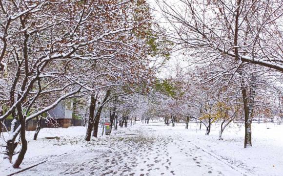 Сніг та ожеледиця. Рятувальники попередили про погіршення погоди в низці українських областей