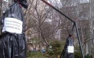 У Житомирі встановили «шибеницю» для боржників за послуги ЖКГ