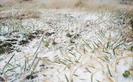 В Україні випаде мокрий сніг